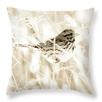 He Feeds The Sparrows Throw Pillow