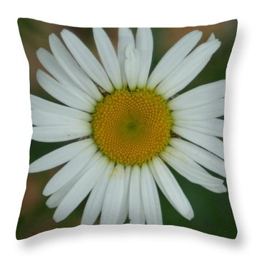 He Loves Me.  He Loves Me Not. Throw Pillow