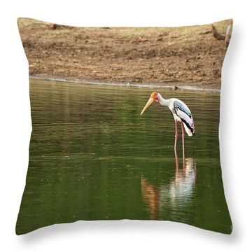 The Painted Stork  Mycteria Leucocephala  Throw Pillow