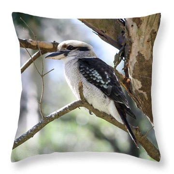 Throw Pillow featuring the photograph He Sings The Song Of The Bush by Linda Lees