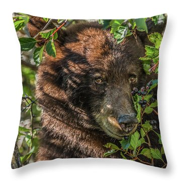 He Was Hiding In A Tree Throw Pillow