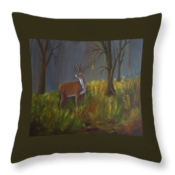 He Who Holds The Key Throw Pillow