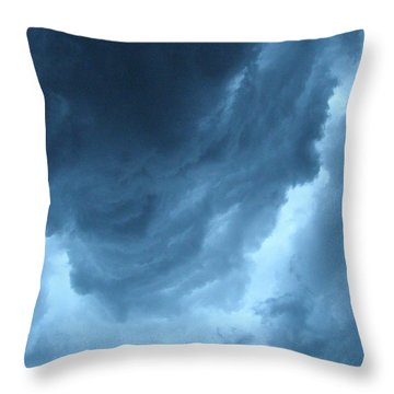 Throw Pillow featuring the photograph Head For Cover by Angie Rea