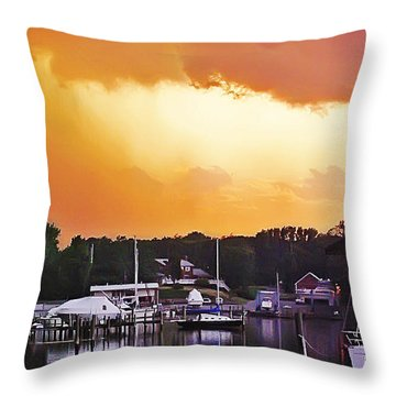 Throw Pillow featuring the photograph Head For Safety by Brian Wallace