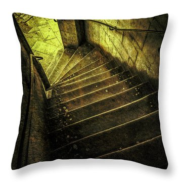 Head Full Of Drought Throw Pillow