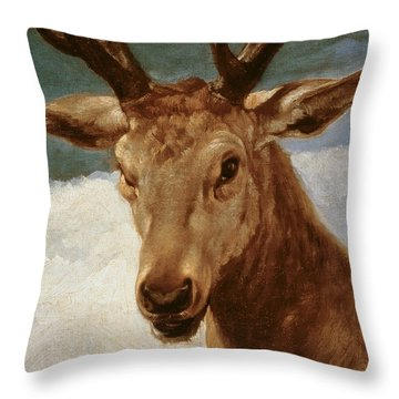 Head Of A Stag Throw Pillow by Diego Rodriguez de Silva y Velazquez