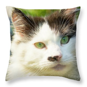 Head Of Cat Throw Pillow