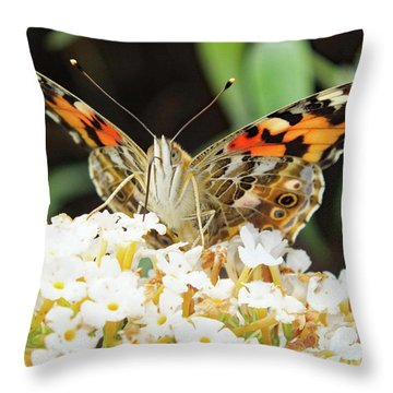 Head Shot - Painted Lady Throw Pillow