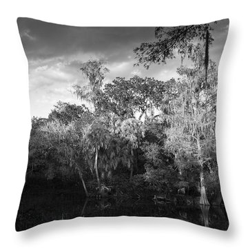 Head Waters Throw Pillow
