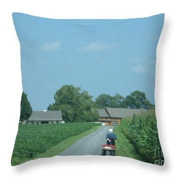 Heading Home From The Market Throw Pillow