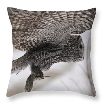 Throw Pillow featuring the photograph Heading Home With The Booty by Larry Ricker