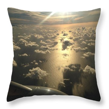 Heading South Throw Pillow