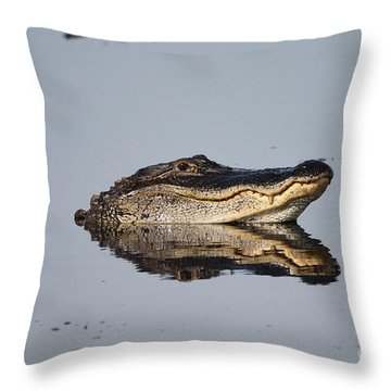 Heads Up Throw Pillow by Kathy Gibbons