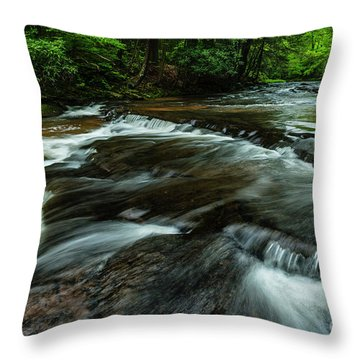 Headwaters Of Williams River  Throw Pillow