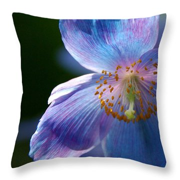 Throw Pillow featuring the photograph Healing Light by Byron Varvarigos