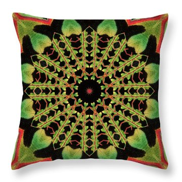 Throw Pillow featuring the photograph Healing Mandala 13 by Bell And Todd