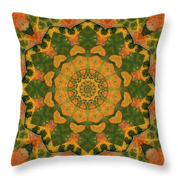 Throw Pillow featuring the photograph Healing Mandala 9 by Bell And Todd