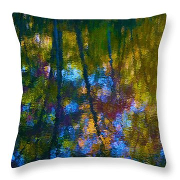 Healing Reflection Throw Pillow