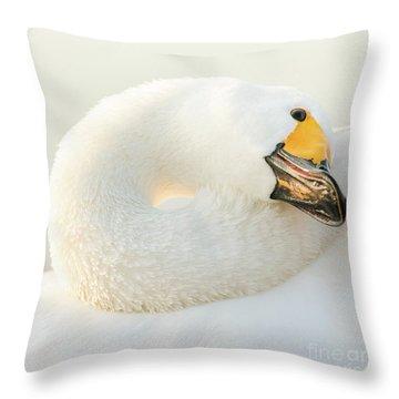 Healing Throw Pillow