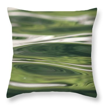 Healing Waters Throw Pillow by Cathie Douglas