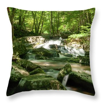 Throw Pillow featuring the photograph Healing Waters by Lara Ellis