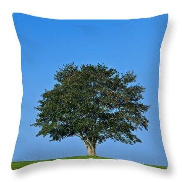 Healthy Tree Throw Pillow by John Greim