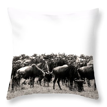 Herd Of Wildebeestes Throw Pillow
