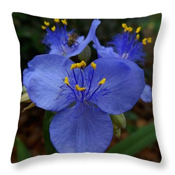 Heart And Spirit Throw Pillow