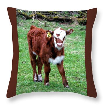 Throw Pillow featuring the photograph Heart by Cricket Hackmann