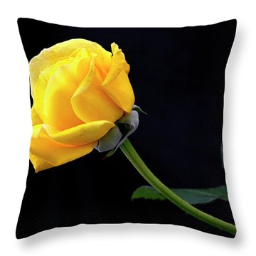 Heart Felt Throw Pillow