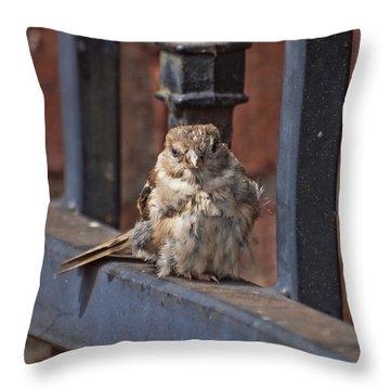 Heart Of An Eagle  Throw Pillow