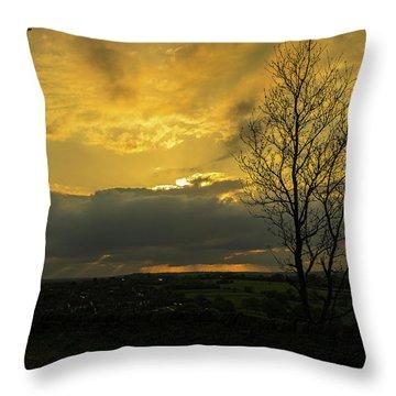 Heart Of Gold Throw Pillow