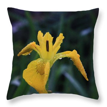 Heart Of Iris Throw Pillow