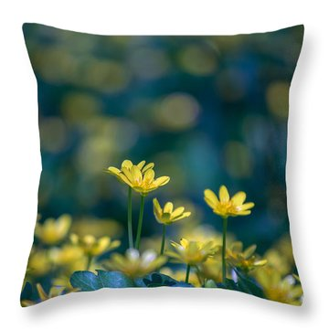 Throw Pillow featuring the photograph Heart Of Small Things by Rima Biswas