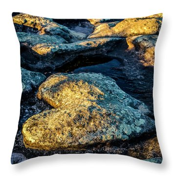 Heart Of Stone Throw Pillow by Lana Enderle