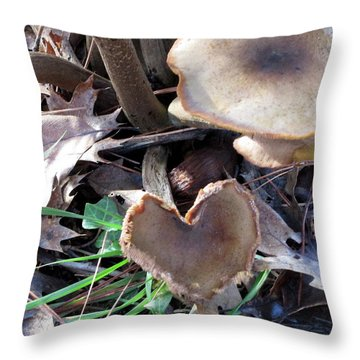 Throw Pillow featuring the photograph Heart Of The Matter Smaller Pic by Marie Neder