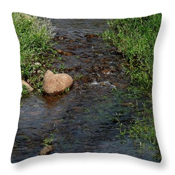 Heart Of The Stream Throw Pillow