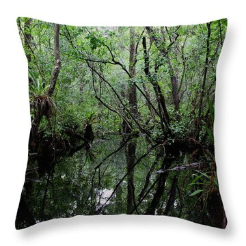 Throw Pillow featuring the photograph Heart Of The Swamp by Barbara Bowen