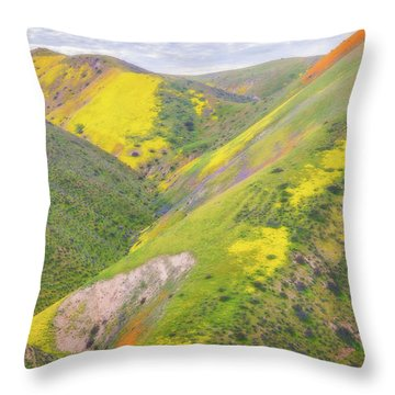 Throw Pillow featuring the photograph Heart Of The Temblor Range by Marc Crumpler