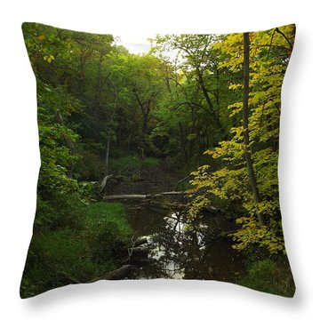 Throw Pillow featuring the photograph Heart Of The Woods by Viviana  Nadowski
