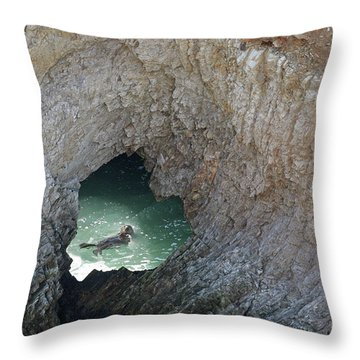 Heart Rock Otter Throw Pillow