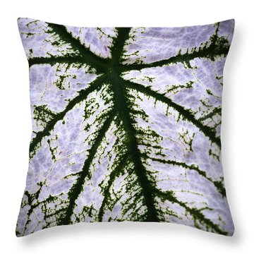 Heart Shaped Leaf Throw Pillow by Catherine Lau
