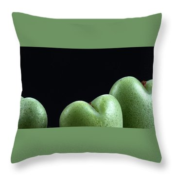 Heart Shaped Lithops Throw Pillow by Catherine Lau