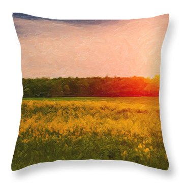 Heartland Glow Throw Pillow