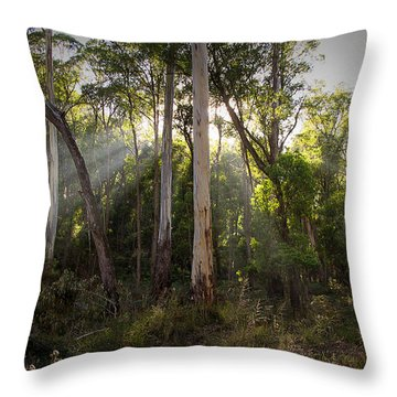 Heartland Throw Pillow