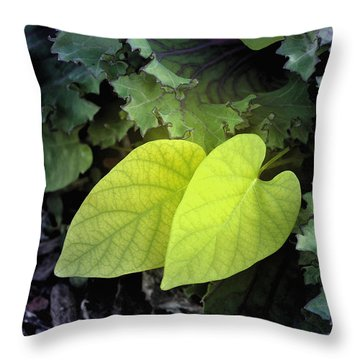 Hearts In Nature Throw Pillow