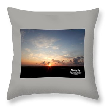 Hearts In The Distance Throw Pillow by Barbara Tristan