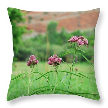 Heat Retreat Throw Pillow