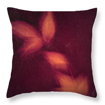 Heated Throw Pillow