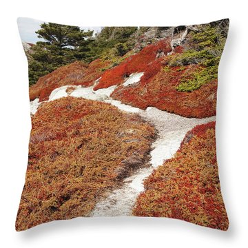 Heather Run Throw Pillow